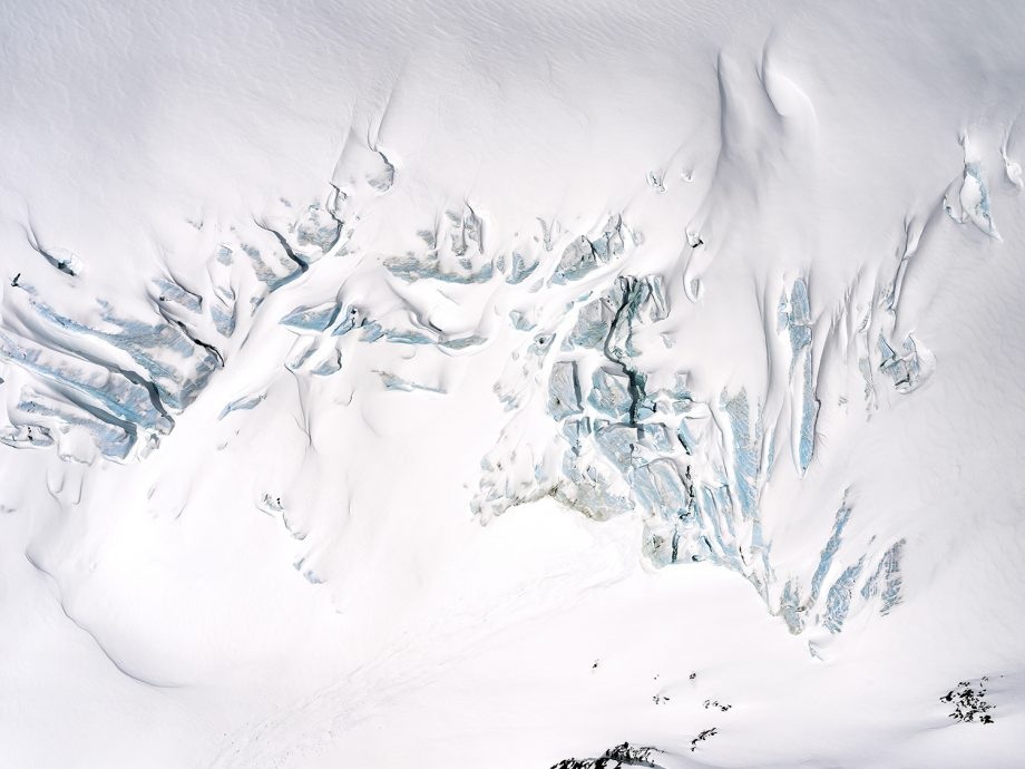 Fossil (Urvogel)   Garibaldi Glacier, 2018
